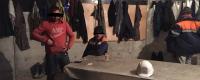 Cetățeni ai Azerbaidjanului depistați de către ofițerii Biroului migrație și azil în desfășurarea muncii ilegale
