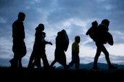 migrants-ombres.jpg